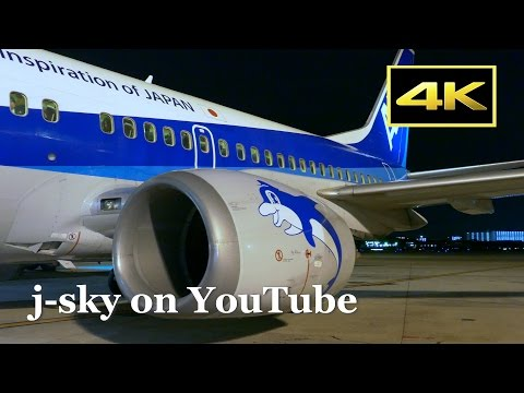 [4K] Beautiful night views! ANA Boeing 737-500's Flight from Osaka Itami to Fukuoka / 全日空 大阪伊丹~福岡