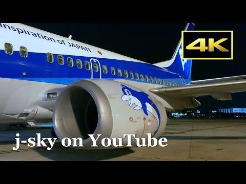 [4K] Beautiful night views! ANA Boeing 737-500's Flight from Osaka Itami to Fukuoka / 全日空 大阪伊丹~福岡