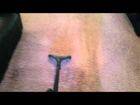 Cleaning & Drying Frieze carpets