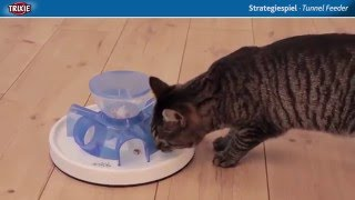 Keep your Cat Healthy with an Activity Feeder - Healthy Cats Mart