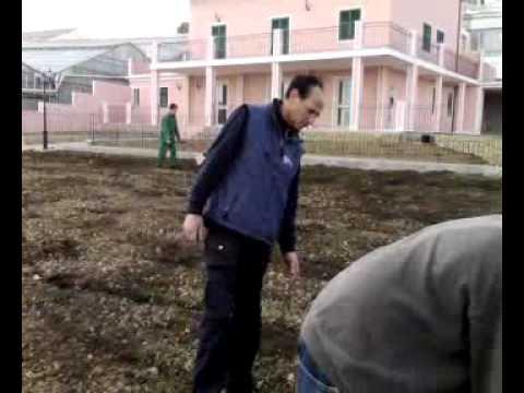 Giuseppe forastieri fresa con la motozappa mp4 youtube for Youtube motozappa