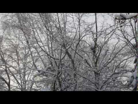 ukulele-cover-ludovico-einaudi-nuvole-bianche-lizzie-rogozinski