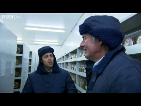 Millennium Seed Bank - Cruickshank on Kew: The Garden That Changed the World - BBC Two