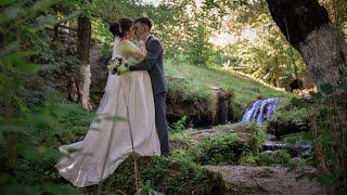 Свадьба - Дмитрий & Ольга / Dmitriy & Olga - Wedding video