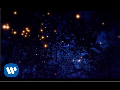 Enya - Even In The Shadows (Lyric Video)