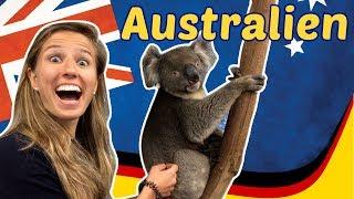 Im Wildpark in Australien! Hallo Koalas, Kängurus, Schlangen, ... 🐨🐨🐨