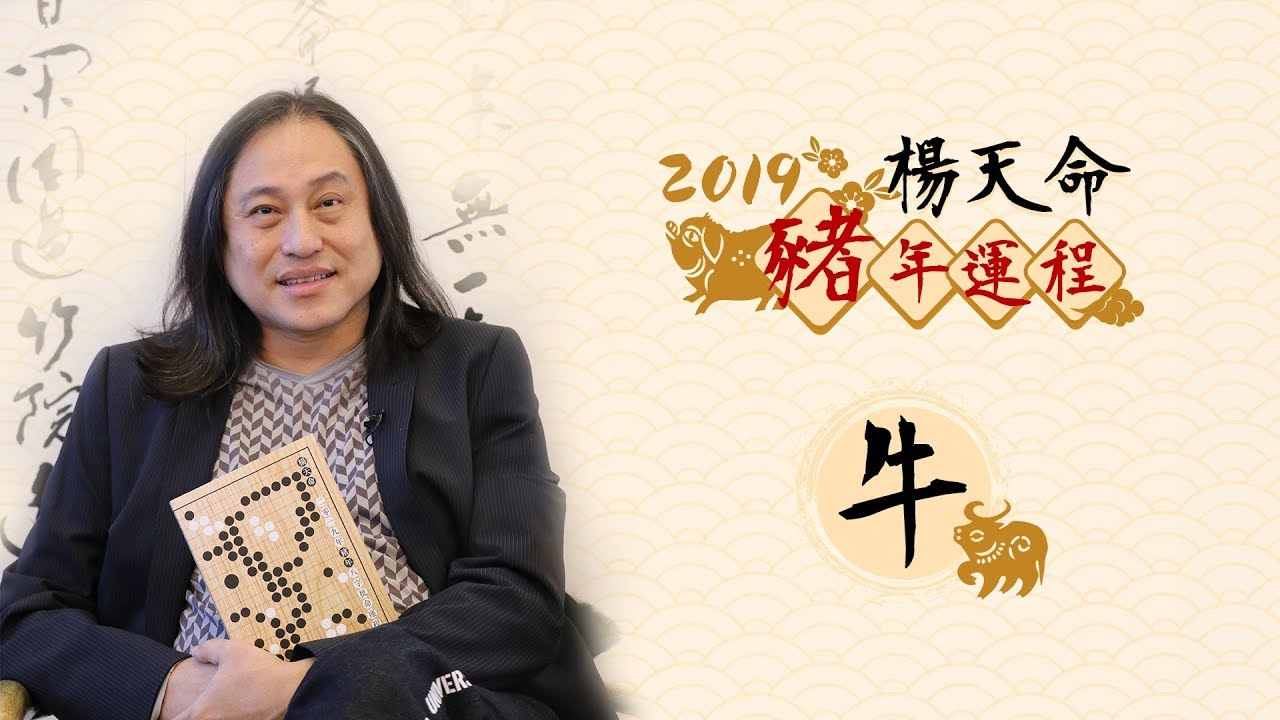 楊天命2019豬年十二生肖運程 《牛》 - YouTube