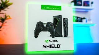 Why PC Gamers NEED the Nvidia Shield TV!