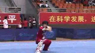 2010年全国武术套路锦标赛(传统)M14 005 男子象形拳  赵杰