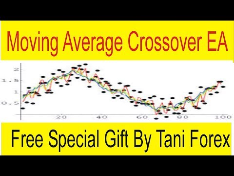 Best moving average crossover forex