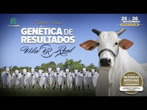 Convite Vila Real Genética de Resultados