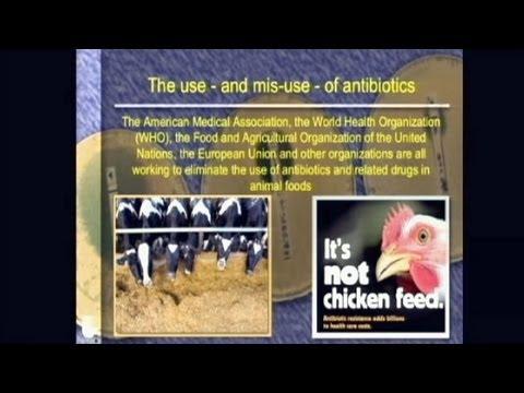 Fighting Super Bugs: Overcoming Antibiotic Resistance