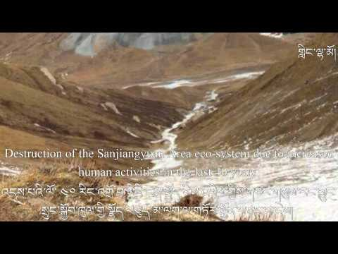 Mining kills Tibetan glaciers and poisons three main rivers of Southeast Asia