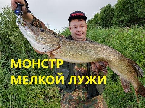 видео: Бой с Трофейной Щукой! Воблер который приносит Щук 7+ кг.