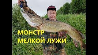 Бой с Трофейной Щукой! Воблер который приносит Щук 7+ кг.