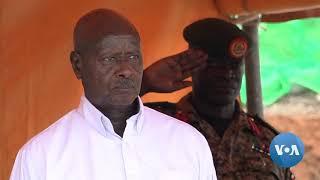 Uganda Music Star and Opposition Legislator Granted Bail