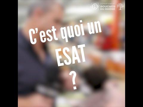 C'est quoi un ESAT ?