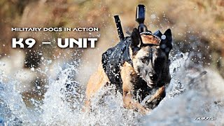 K9 - Unit | Military Dogs In Action | Military Motivational
