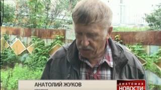 Анатомия новости. Дальневосточные льготы(, 2011-08-14T00:54:07.000Z)