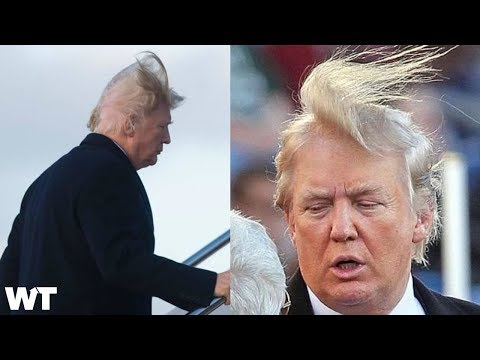 Is President Donald Trump's Hair Real Or Fake?! | What's Trending Now!