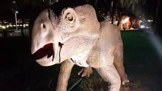 Entering The Dubai Garden Glow & Dinosaur Park At Zabeel Park In Dubai 26.11.2016