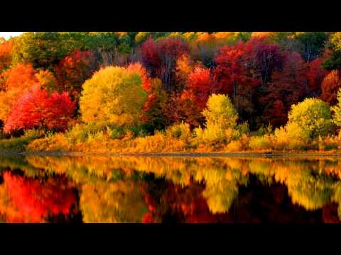 Tiffany - 3 Fall Foliage Hikes w/ the Best Colors
