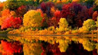 Autumn in New England (Music by Vivaldi)