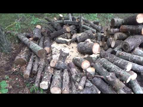 The Off Grid Project Wood Stove Cooking Fire Wood & More