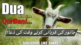 Bakra Eid || Qurbani ki Dua || Qurbani karty Waqat Ki Dua|| Dua For Qurbani || Listen Full Video !