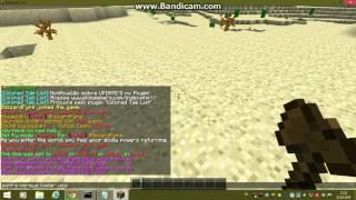 Minecraft Server - Uğraşmadan Blok Koyma