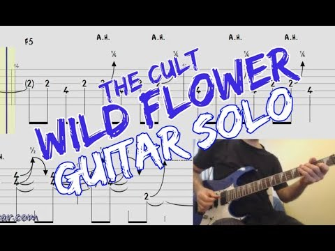Wild Flower (The Cult) Guitar Solo with TAB