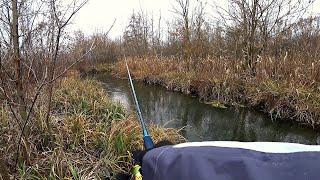 ЛОВЛЯ ЩУКИ В РУЧЬЕ НА СПИННИНГ Рыбалка со спиннингом поздней осенью