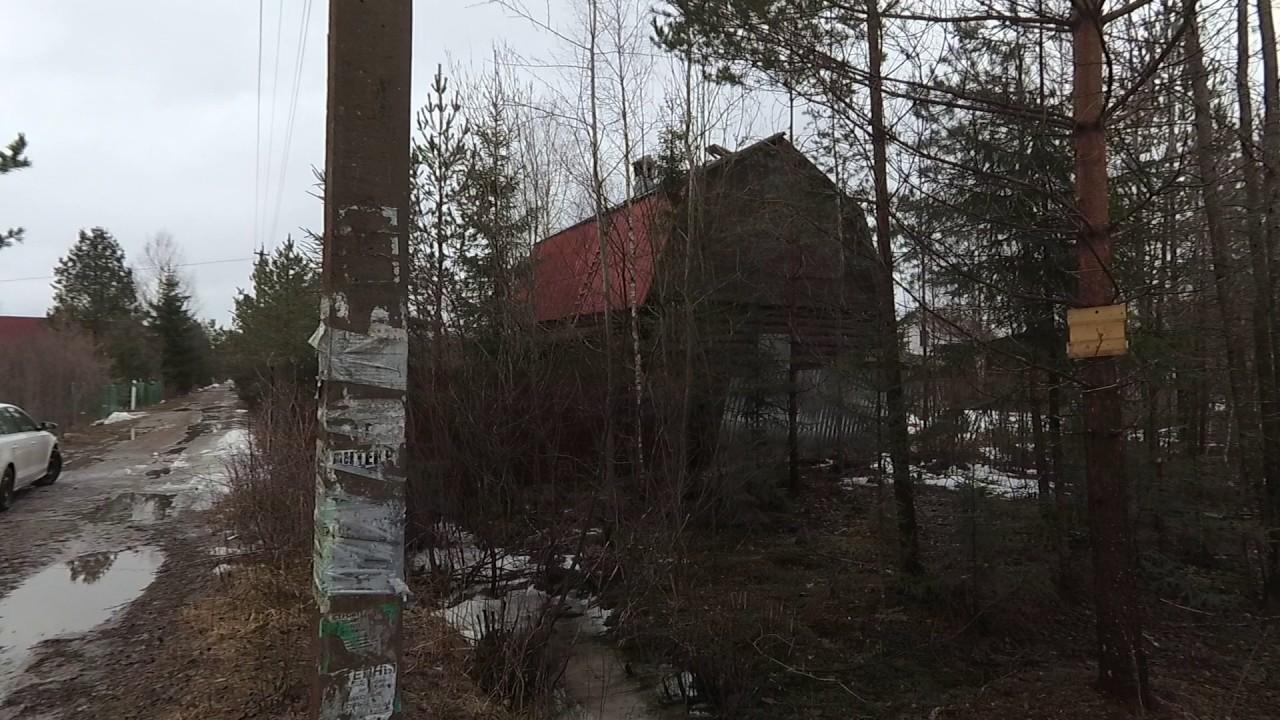 Шар Игора - Новоприозерское шоссе 54 км. - YouTube