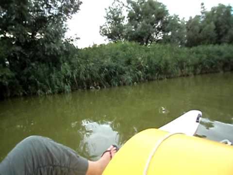 preț accesibil salvați poze noi Hidrobicicleta in Gura Portitei - YouTube
