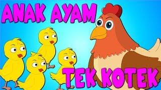 Anak ayam | Tek Kotek Kotek | Lagu Kanak-Kanak Malaysia Popular | Pengumpulan 23 min | Lagu Kanak TV