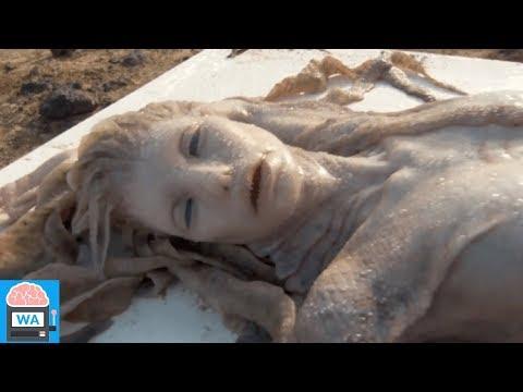 5 ECHTE Meerjungfrauen - die auf Kamera aufgenommen wurden