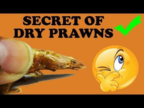 SECRET OF DRY PRAWNS | CLEAN DRY SHRIMP PRAWNS | HOW TO CLEAN SUKAT
