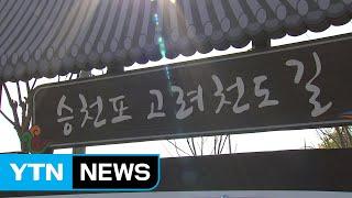 고려천도공원...강화 평화역사 관광지 기대 / YTN