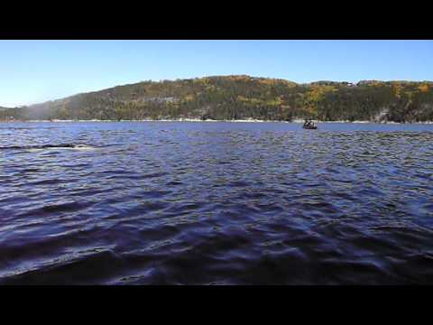 Whale Watching Saguenay, Montreal...