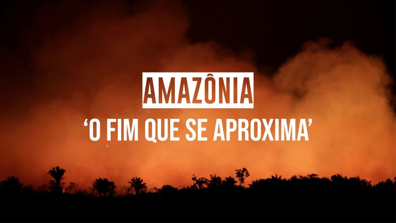 Dez Dias Na Amazônia Retratos De Uma Floresta Em Chamas