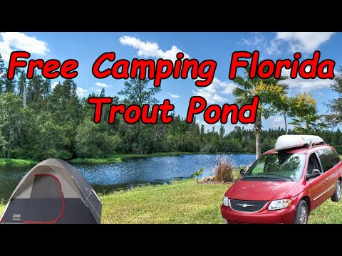 Free Camping Florida - Ocala National Forest - Trout Pond