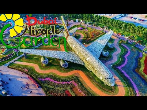Dubai Miracle Garden 2021   Dubai 2021 Vlog   How to Travel   Dubai Attractions   Travel