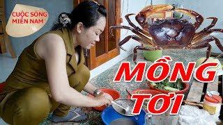 Cách làm Canh Cua Đồng mồng tơi | Nam Việt 725 – Món ngon miền tây
