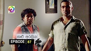 Kalu Araliya Episode 87  || කළු අරලිය   . . . | සතියේ දිනවල රාත්රී 10.00 ට ස්වර්ණවාහිනී බලන්න... Thumbnail