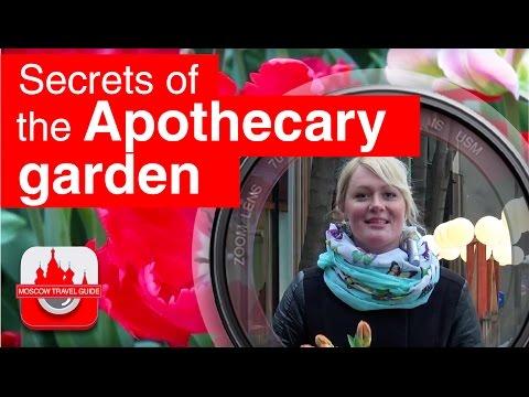 Moscow tour. Apothecary garden. [Moscow Travel Guide]