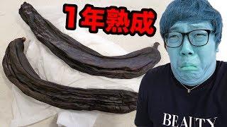 【閲覧注意】1年間冷蔵庫で熟成したバナナ食べたらシビれた… HIKAKIN 検索動画 18