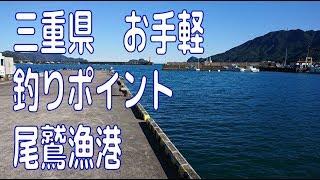 三重県 お手軽ポイント 尾鷲漁港 チヌ・アジ・シーバス