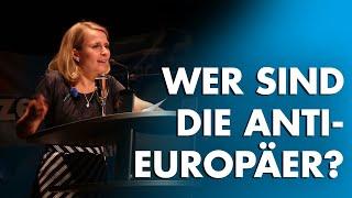 Sozialer Frieden in Europa - Wer sind die wirklichen Anti-Europäer?