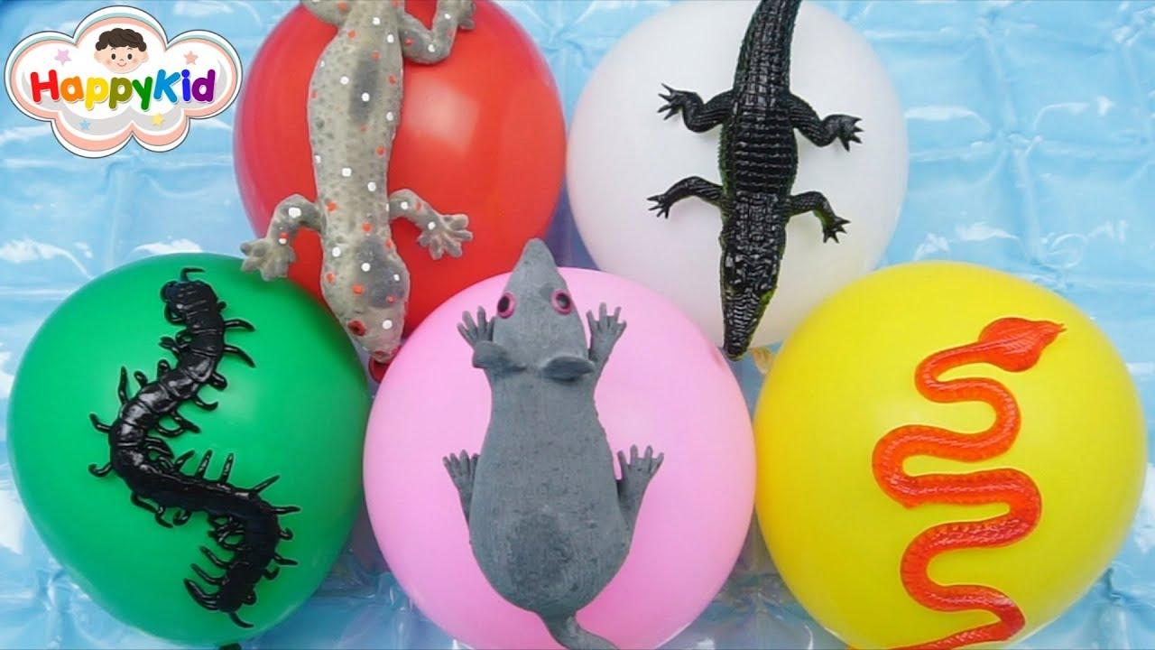 เจาะลูกโป่งสัตว์น่ากลัว 2 มีทั้งหนู งู ตะขาบ ตุ๊กแก ของเล่นสำหรับเด็ก   เรียนรู้สีและชื่อสัตว์