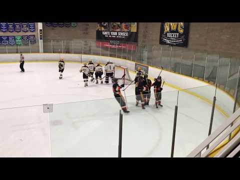Tanner Milne - Bantam Burnaby Winter club A1 Goal